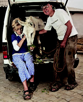 Bob and Jean Harrison feed Fred, a rescued donkey